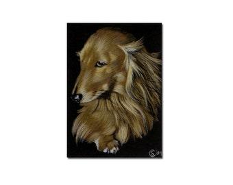 "ACEO COMMISSION pet Custom animal PORTRAIT Sandrine Curtiss Original Art 2.5""x3.5"" animal colored pencil painting Gift dog cat wildlife"