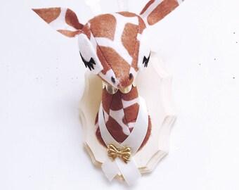 Giraffe Taxidermy