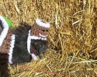 Gingerbread Chicken Hat,Chicken Hat,Custom Made,Photo Prop,Gingerbread Hat,Crochet Chicken,Crochet Hat,Chicken Clothes,Chicken Photo Prop