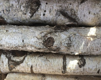 """Set of 8 White Birch Logs 12"""" long and 1 1/2"""" to 2 1/2""""  in diameter Fireplace and wedding decorations"""