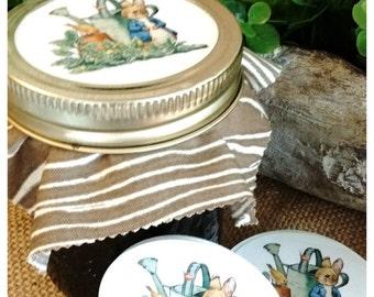Peter Rabbit Jam Jar stickers - XL 2.5 inch stickers - Peter Rabbit party - By the dozen