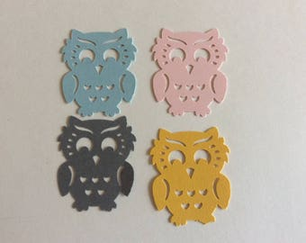 50 Owl die cut