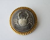 Carved Crab plastic cameo brooch Zodiac Cancer Sign June 22-July 21.