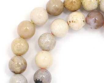Fossilized Coral (Multi-Shade) Beads - 6mm Round - Limited Quantity