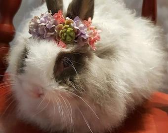 Floral Bunny Crown (Succulents)
