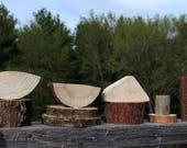 natural building blocks - tree branch set of 10