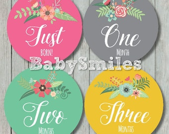 FREEGIFT Monthly Baby Stickers Baby Month Stickers Baby Girl Month Sticker Monthly Milestone Sticker Feathers Vintage Flowers Floral Sticker