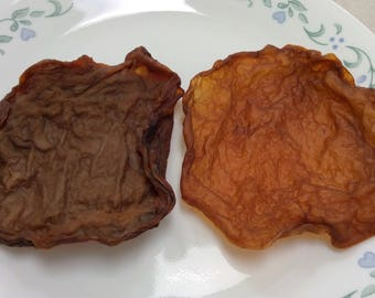 2 Dried SCOBY Chewy Dog Treats