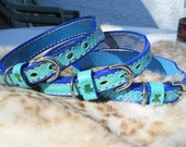 Handmade collars, shamrock leather collars, leather dog collars, turquoise collars
