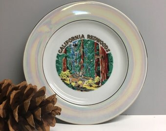 Vintage California Redwoods souvenir plate - USA travel souvenir - redwoods and deer - plate wall decor