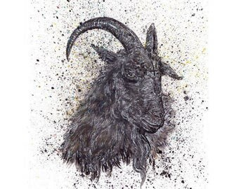 Black Phillip 11x14 limited edition sign and numbered art print