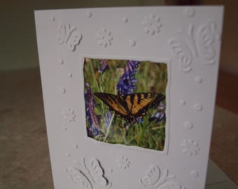 Butterfly Card, Blank Inside, Many Uses: Birthday, Note card, Sympathy, Get Well and more!