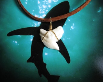 """Shark Tooth Necklace, Modern day Tiger Shark tooth, 20"""" Suede leather cord, Brass wire wrapped"""