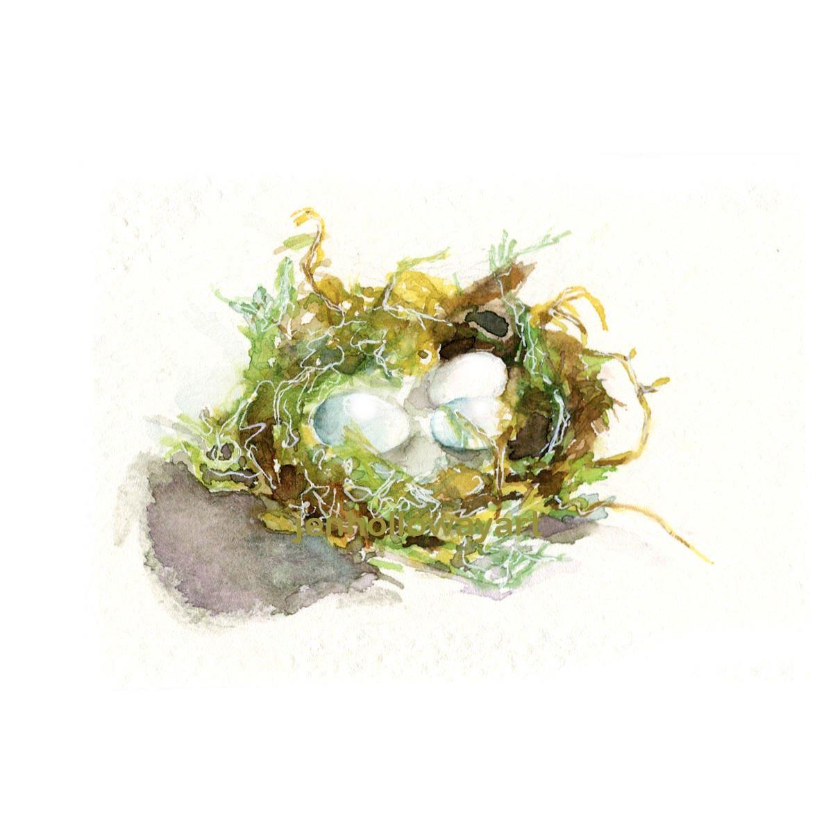 watercolor hummingbird nest bird nest print egg nest print