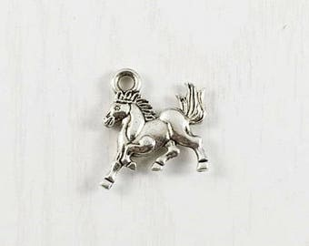 10 - horse charms