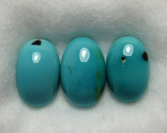 Dyer Blue Mine Natural Turquoise Cabochons from Nevada, 2.74 cttw.