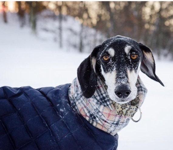 Whippet waterproof winter coats with a long fleece neck.