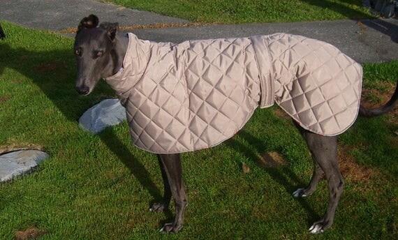 whippet coats waterproof and fleece lined short neck coats