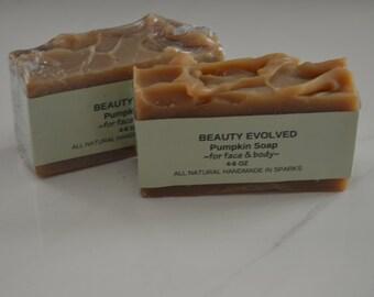 Pumpkin Soap   Natural Handmade Cold Process Soap Shea Butter Puree fruits  great gifts