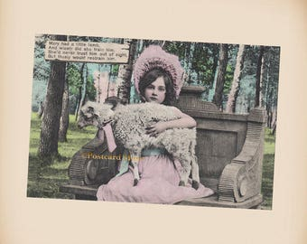 Mary Had A Little Lamb - New 4x6 Photo Print From A Vintage Postcard CE013