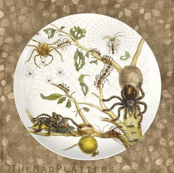 Spiders 1600's spider melamine plate