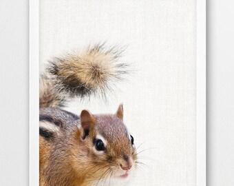 Chipmunk Photo Print, Chipmunk Woodlands Photography, Animals Print, Baby Shower Wall Art, Cute Animals Print, Kids Room Nursery Printable