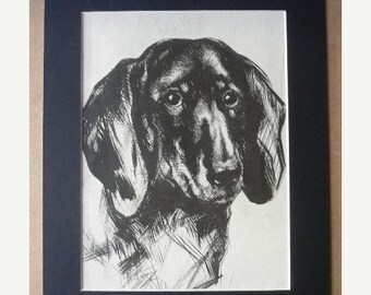 SALE CORGI dog print Vintage 1935 dog bookplate Unique collectors gift, birthday anniversary dog lover dog gift present Congratulations dog