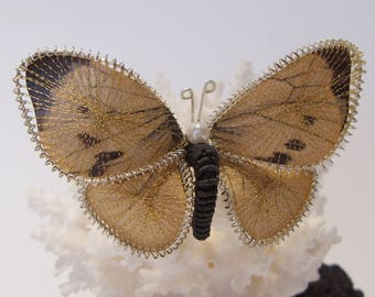 Unusual Paper Butterfly Brooch Overlaid with a Web of Gold thread and Outlined in Silver Wire