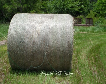 Hay Round Bale Photograph DIGITAL Download Primitive Rustic Country Farm Ranch Art Crafts COMMERCIAL LICENSE