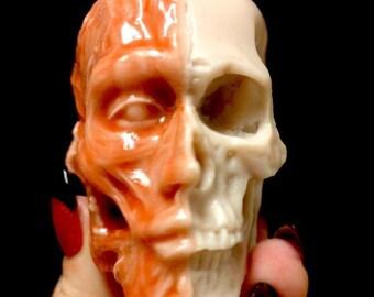 Gothic Anatomical Skull Oddity Soap