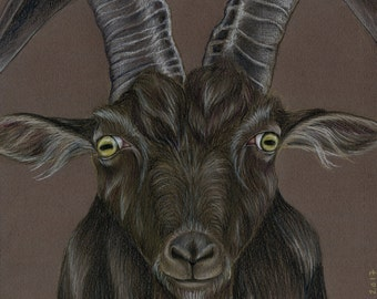 Black Goat Original Drawing