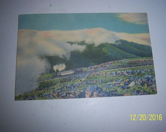1950's Cog Railway Mount Washington NH Railroad RailcarSteam Engine Postcard