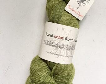 50% Off Natural Merino Plant Dyed Wool Yarn Aran Local Color Studio Scarbiosa Green 200 Yards