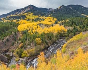 Colorado Fall, Autumn Photography, Yellow, Aspens, Landscape, Colorado Photography, Wall Art, Mountain Photography, Waterfalls