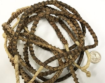 Real Snake Vertebrae Bead Strands From Africa, 10mm x 9mm, 85 Vertera approx., Snake Bone Bead Strand - SnaVer