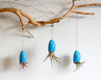 Ceramic hanging planter in shape of squid/ air planter/ succulent planter/ flower pot/ white wall planter/ sea urchin/ Christmas gift