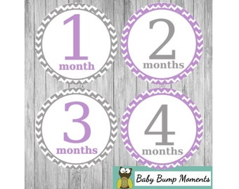 Bodysuit Stickers, Monthly Baby Stickers Girl, Growth Stickers,  Milestone Month Stickers, Baby Photo Prop, Purple Grey Gray Chevron