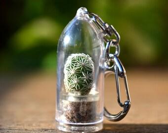 Snowball Cactus Terrarium Keychain / Cactus Keychain / For Her Keychain / Keychain Lanyard / Boyfriend Gift