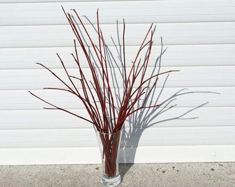 Tree branches natural wood decor rustic bouquet barn wedding decor country wedding natural twig red branches minimalist decor wood supply