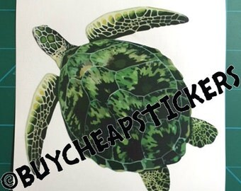 Green Sea Turtle Decal/Sticker 5X5