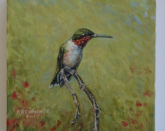 Male Hummingbird Oil Painting