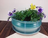 Large green planter flowe...