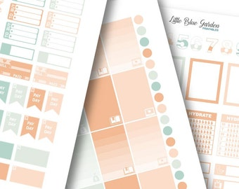 Lil' Flag Color Medley: Sedona Planner Stickers -Instant Download, printable sticker kit, eclp stickers