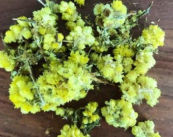 Life Everlasting flowers ~ organic