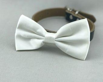 Ivory Wedding Dog Bowtie Pet Wedding Cream Black Dog Collar