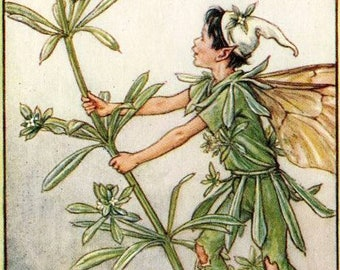 The Goose-Grass Fairy - Counted cross stitch pattern in PDF format