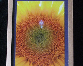 Sunflower~City Photo Greeting Cards 10 pack