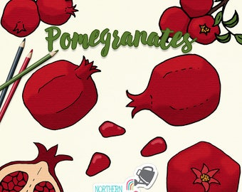 Pomegranate Illustrations - hand drawn pomegranate fruit and branch clip art in deep red and green - commercial use OK