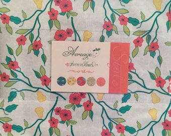 On Sale--Acreage Layer Cake by Shannon Gillman Orr for Moda fabrics