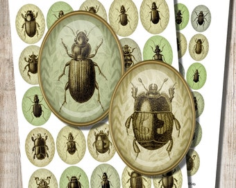 Beetle Ovals, Digital Collage Sheet, 18 x 25 mm, 22 x 30 mm Ovals, Green Shades, Insect Jewelry, Green Jewelry Image, Printable Download, c9